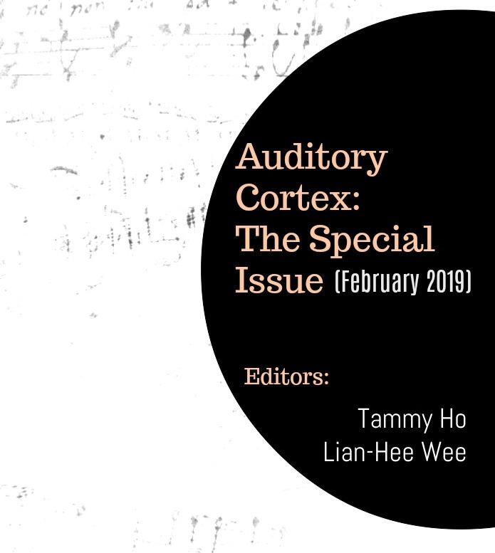 auditory-cortex 2019.jpg